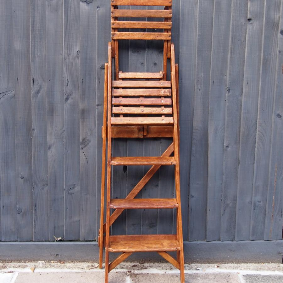 Library Folding Ladder with bookshelf C1920s