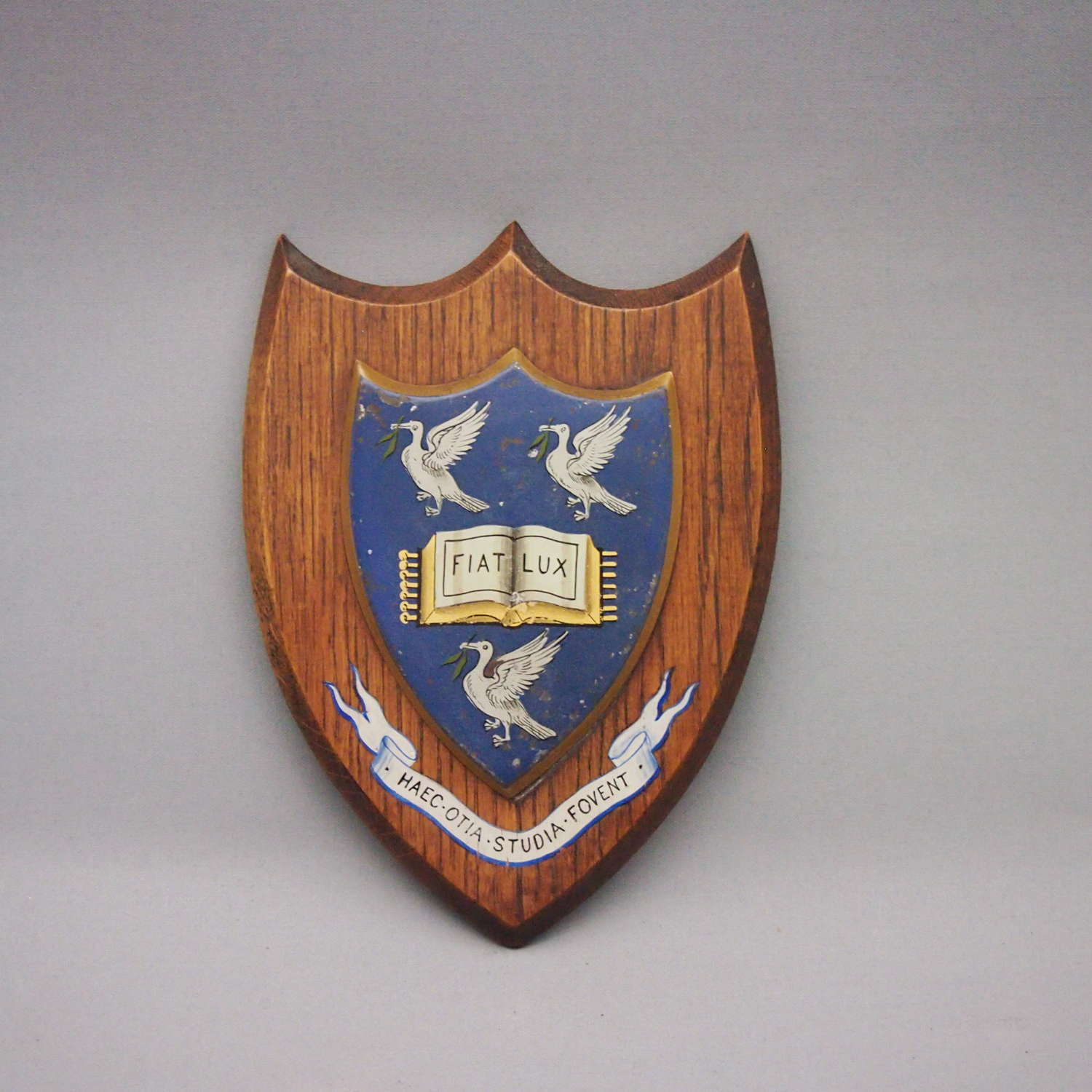 Wood and Metal Painted Shield Liverpool University W8575